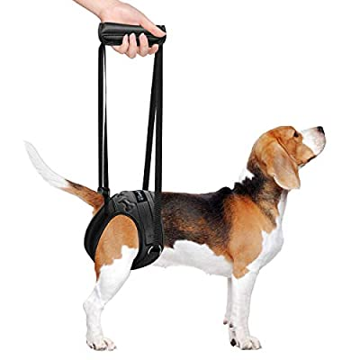metric usa / Comfort Fit Pets ? Dog Lifting Harness for Rear Legs ? Soft Padded Dog Support Harness Adjustable Straps to Help Lift Dogs Rear for Canine Aid ? Injured ? Disabled ?Arthritis ? Elderly ?