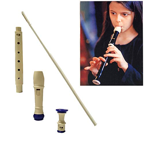 Jiuxun Baroque Soprano Recorder 8 Hole, Key of C 3 Piece Music Flute Instrument with Cleaning Rod, Case Bag, Fingering Chart (Blue~White) (Autumn Chart)