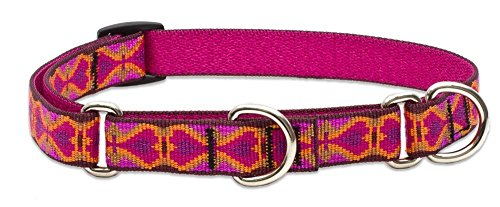 "LupinePet Originals 3/4"" Heart 2 Heart 14-20"" Martingale Collar for Medium and Larger Dogs"
