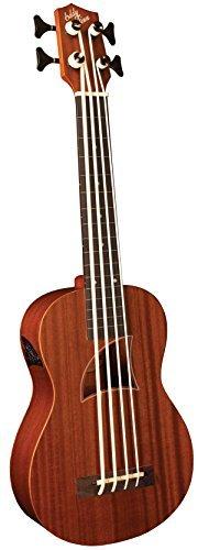 Eddy Finn EF-EBASS-FL Fretless Ukulele Bass with Gig Bag [並行輸入品]   B07FS8QYQB