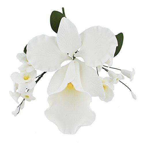 Large Cattleya Orchid - 8