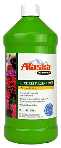 Alaska By Pennington Kelp Liquid Fertilizer 0 13-0-0 60 Concentrate, 32  ounces