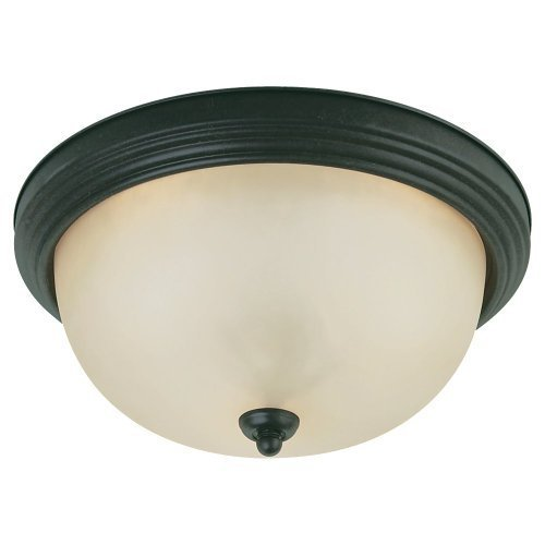 (Sea Gull Lighting 77164820 2-Light Del Prato Flush Mount, Chestnut Bronze Finish with Etched Cafe Tint?Glass by Sea Gull Lighting)