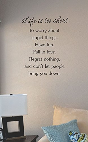 Life is too short ot worry about stupid things. Have fun. Fall in love. Regret nothing. and don't let people bring you down. Vinyl Wall Art Decal Sticker