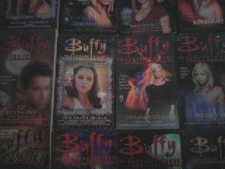 Buffy Vampire Slayer Halloween Rain Book (Buffy The Vampire Slayer set (12)...Angel Chronical 1,Blooded,Coyote Moon,Child Hunt,Gatekeeper Trilogy,Halloween Rain,Unseen Long Way Home,Night Living Rerun,Return CHaos,Sins of Father,Tempted Champions,Unatural)
