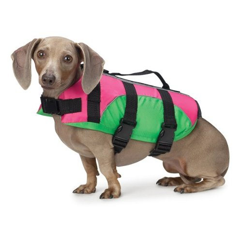 (East Side Collection Fashion Aquatic Life Vest Preserver - Pink and Green )