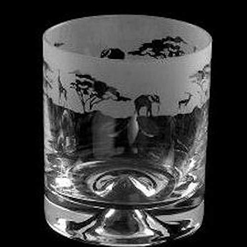 Animo Glass Safari Whisky Tumbler