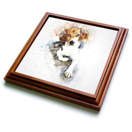 3dRose trv_299577_1 Trivet 8 by 8-Inch Brown