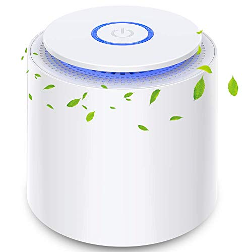 BOYON Air Purifiers for Home Bedroom with H13 True HEPA Filter, Air Cleaner with Silent Filtration for Pets, Dust, Odors and Smoke, with Night Light, Portable Air Purifier for Office and Large Room
