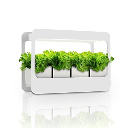 Led Light Herb Garden in US - 4