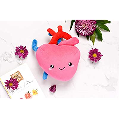 nerdbugs Heart Plush - I Aorta to Tell You How Much I Love You!- Cute & Funny Cardiology Heart Plush/ Get Well Gift/ Health Education Toy: Toys & Games