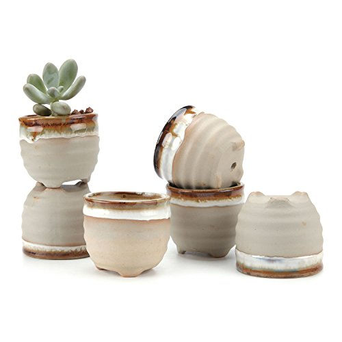 T4U 2.25 Inch Ceramic Flowing glaze solid Gray Base Serial Ring Form Shape succulent Plant Pot/Cactus Plant Pot Flower Pot/Container/Planter Package 1 Pack of 6