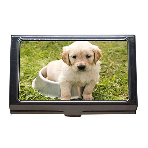 Arizona Credit Card - Business Card Holder Wallet Credit Card ID Case,Puppy Golden Retriever Dog in The Free Young Pet,Business Card Case Stainless Steel
