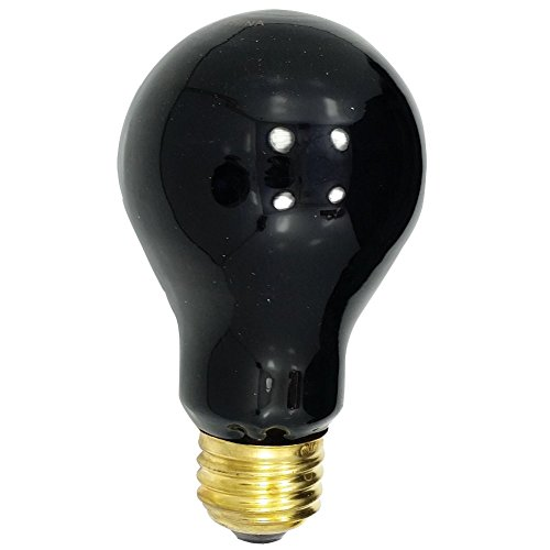 Ultraviolet Incandescent Black-Lite Light Bulb With 500-Hour Indoor Flood (Rave Lightbulb compare prices)