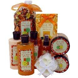 Citrus Splash Spa Gift Set by Art de Moi, 9 Piece Kit with Shower Gel, Moisturizing Lotion, Soothing Bath Salts, Body Scrub, Body Butter, Fragrant Spray, Bubble Bath, Flower Soaps and Potpourri