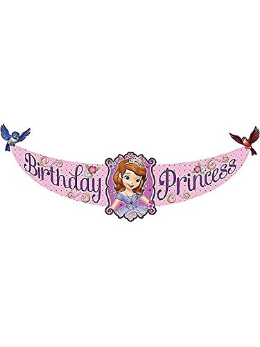 Hallmark - Disney Junior Sofia the First Birthday Princess Banner, Purple -