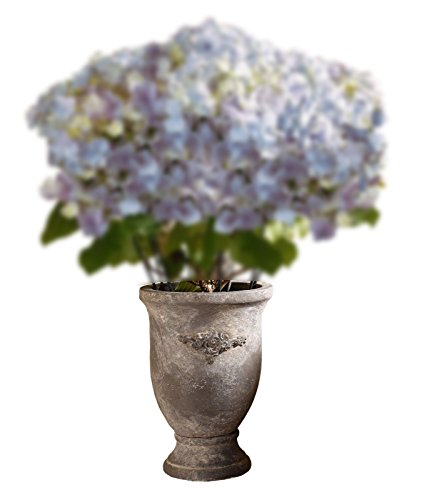 Accent Vase - Stoneware Cup Antique style Flower Vase Product SKU: HD226763
