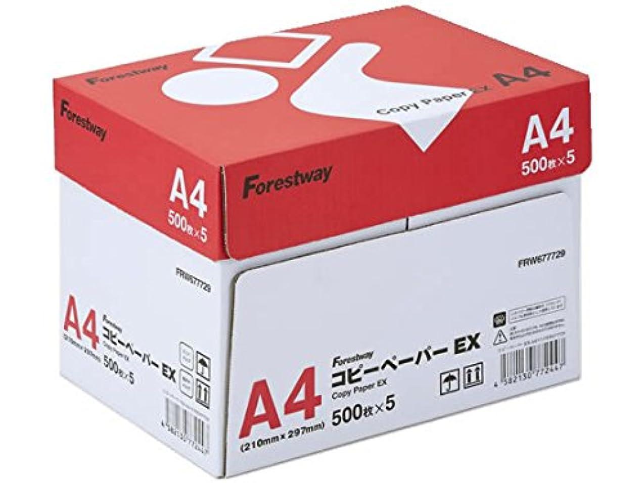 あえぎ過激派ぼんやりしたコピー用紙 A4 ホワイトコピー用紙 高白色 紙厚0.09mm 2500枚(500×5)