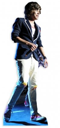 Harry Styles Cardboard Cutout (STAR CUTOUTS Cut Out of Harry Styles 1)