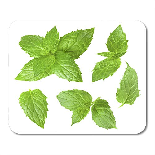 Nakamela Mouse Pads Ingredient Green Leaf Collection of Mint Leaves White Menthol Lemon Mouse mats 9.5