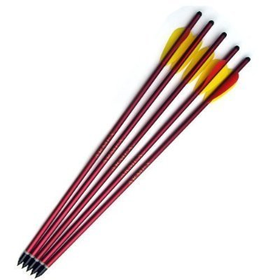 5 Aluminum Metal Arrows 15