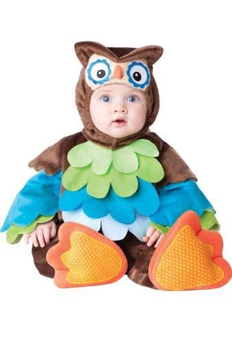 Halloween Costume Ideas For 1 Year Old (InCharacter What a Hoot Infant/Toddler Costume-Large)