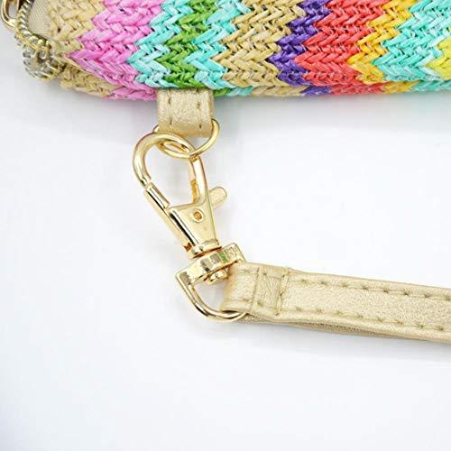 Portable Beach Zipper Waterproof Weave Domybest Envelope Women Bag Bohemia Multicolor Clutch 6xqwnx8EY