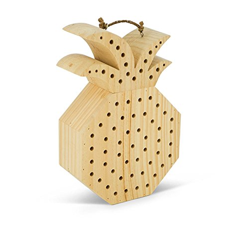Evergreen Sweet Pineapple Bee House by Evergreen Garden