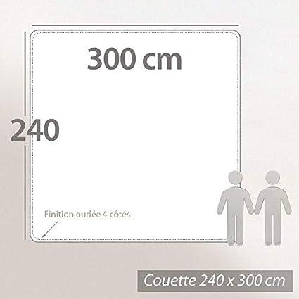 150G//M/² et 300G//M/² = 450G//M/² - Couette /Ét/é L/ég/ère Edredon 1 Personne 3 en 1 Couette Mi-Saison = Couette Temp/ér/ée Chaud Hiver avec Boutons Pression Hansleep Couette 4 Saisons 135x200 cm