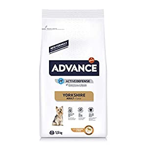 Advance Pienso para Perro Yorkshire Terrier con Pollo – 1500 gr