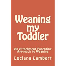 Weaning my Toddler: An Attachment Parenting Approach to Weaning