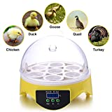Currens 7 Egg Incubator Digital Mini Egg Incubator Chicken Duck Egg Incubator Egg Hatcher (7 Egg Incubator)