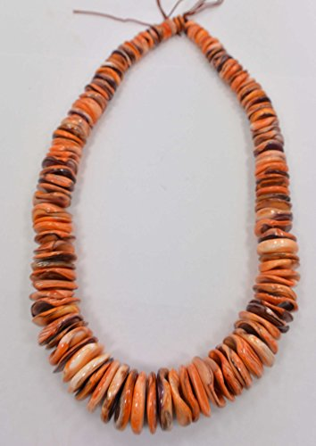 Beautiful Natural Spiny Oyster Shell Orange Graduated Rondelle 8-20 mm Beads 16 Inch Strand