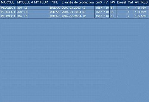 pour 307 1.6 FAMILIARE 110hp 2002-2004 ETS-EXHAUST 1427 Silenziatore marmitta Centrale