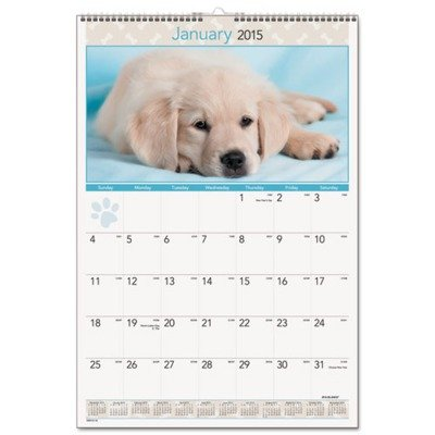 AT-A-GLANCE 2015 Puppies Monthly Wall Calendar, 15.5 x 22.38 x .06 Inches (DMW167-28)