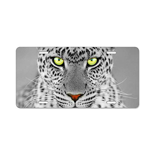 (Fshionlicenkdseplate Cool Cheetah Leopard License Plate Front License Plate Four Holes)
