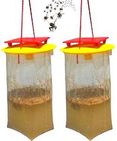 - REDTOP Flycatchers Compact Size Twin Value Pack (2 Traps Included) - 100% Non-Toxic Disposable Outdoor Fly Trap - Designed to Attract Egg-Laying Females (1)