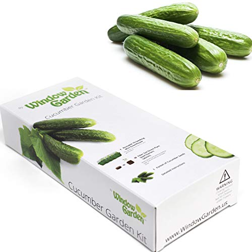 Window Garden  Vegetable Starter Kit  Grow Your Own Food Germinate Seeds on Your Windowsill Then Move to a Patio Planter or Vegetable Patch Mini Greenhouse System  Easy Cucumber
