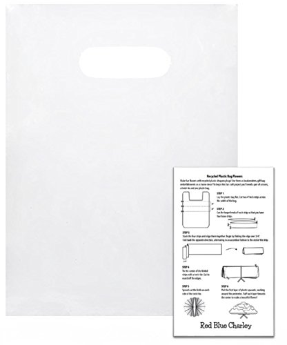 100 Frosted 9x12 Die Cut Handle Bags 2.25 mil with Craft Insert by Red Blue Charley