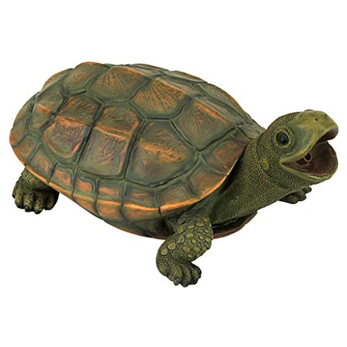 - Design Toscano QM75110551 Sprinke The Turtle Piped Spitter Statue, Full Color