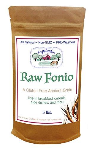 Shipetaukin Raw Fonio Ancient African Grain, 5 Lbs. by Shipetaukin