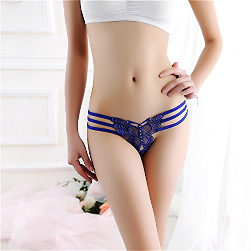 Women Sexy Panties, Tesman Women Sexy Lace Underpants Butterfly Briefs Knickers G-string Thongs (blue) (Butterfly Lace Thongs)