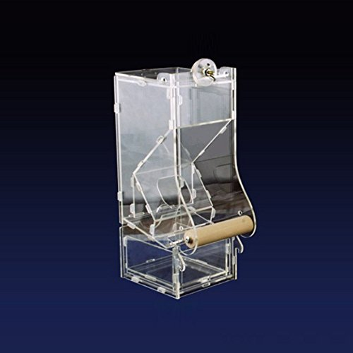 Compare Price Automatic Bird Seed Dispenser On