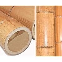 Bambusstange Moso Natur 200cm Durch 8 bis 10cm gelbbraun hitzebehandelt Bambus Rohr Bambusrohre Bamboo Bambusstangen