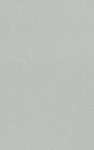Light Grey 11x14 Backing Board - Uncut Photo Mat Board (10-Sheets) (Gray Poster Board)