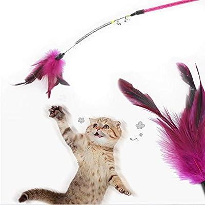 AIDIYA Juguete para Gatos con Plumas y Varita de Juguete para Gato ...