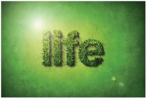 Life (Packet of 100, KJV)