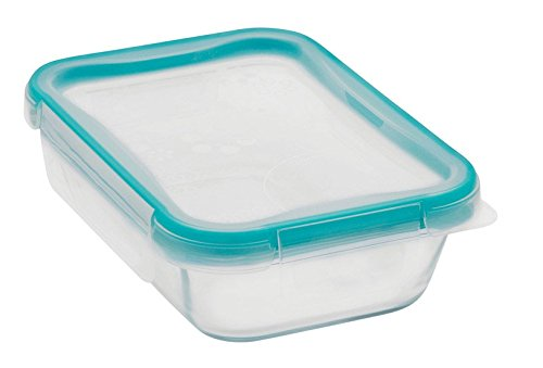 Snapware® 2-Cup Glass Rectangle Container With Total Sol