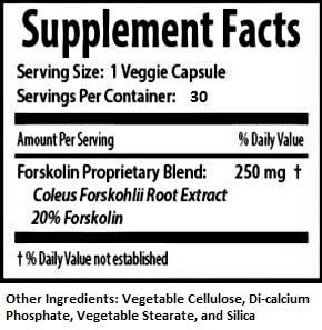 MaritzMayer Laboratories Forskolin 1020 Metabolic Support Weight Loss Formula 20 250mg 30 Capsules 10 Bottles