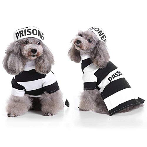 Photos Of Dogs In Halloween Costumes (YOUDirect Prisoner Dog Costume Puppy Jail Cosplay Dog Halloween Costume with Hat for Small Medium Large Dogs Funny Photo Props Accessories)